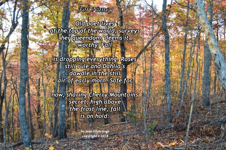 Poem for Nancy